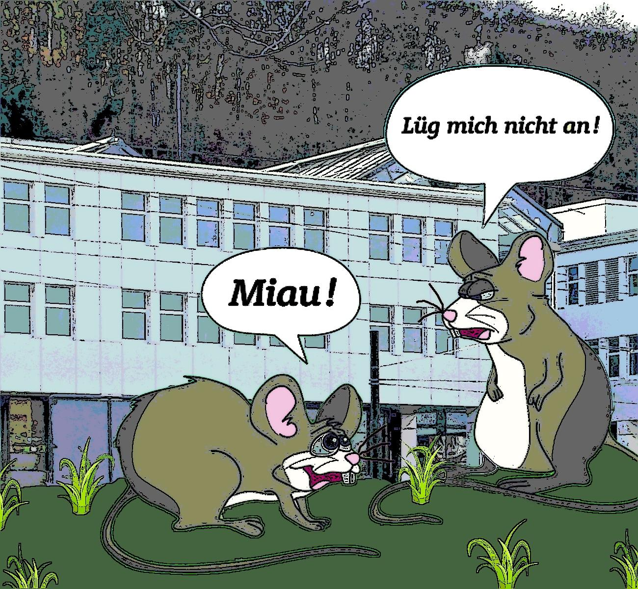 https://grundrechte.ch/2017/BFM_Maus_Gras_Stift.jpg